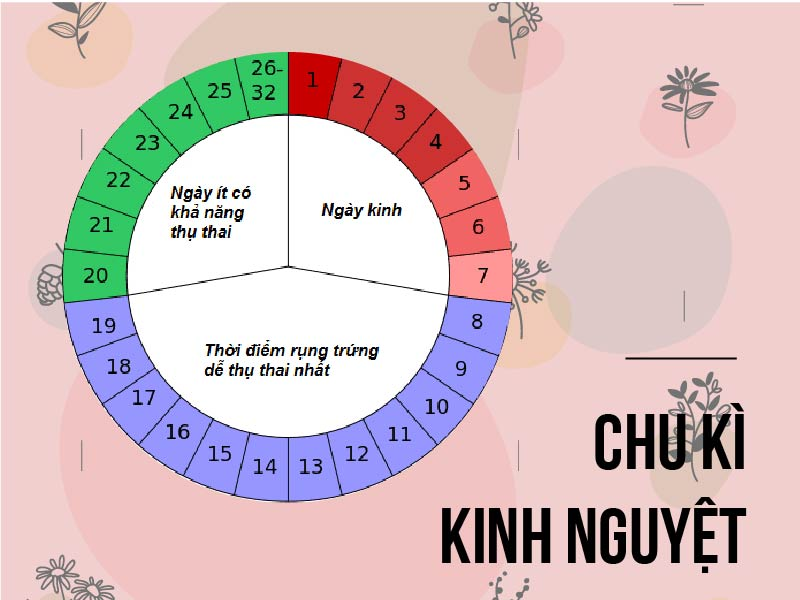 Ovia-giup-ban-theo-doi-chu-ky-kinh-nguyet-va-thoi-diem-rung-trung